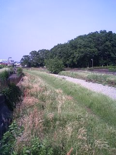 干上がった空堀川