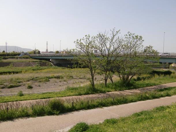 小枝橋の北側に新しくできた新橋